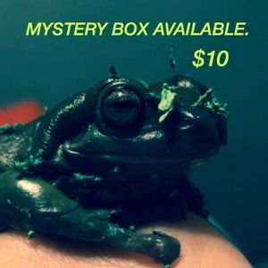 Other - Mystery box!! Moving sale!!